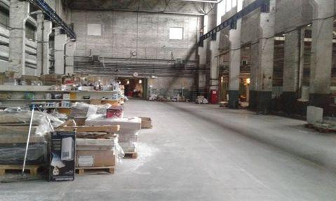 Продам производственное помещение 19395 кв.м, м. Рыбацкое - Фото 5