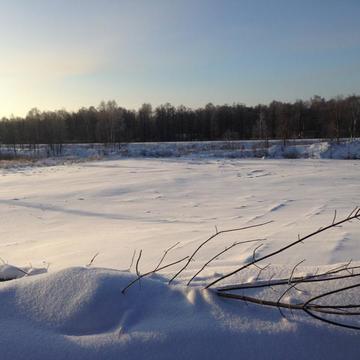 Земельный участок 2,9 га для производственных целей, по Дмитровскому - Фото 5