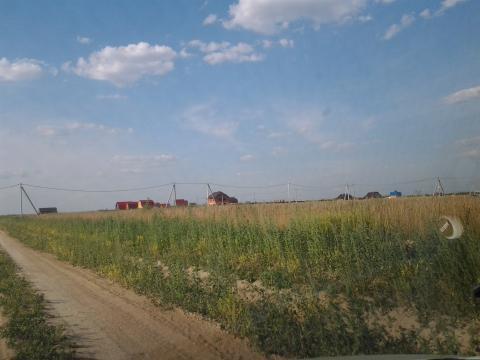 25 соток д.Алферово Чеховский район - Фото 1
