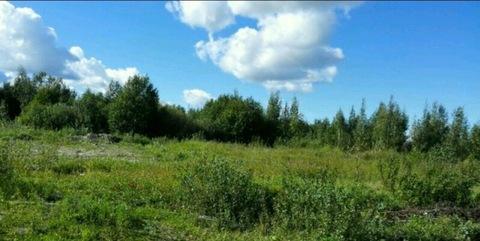 Продается участок 15 соток в 3 км от спб вблизи поселка Горелово - Фото 3