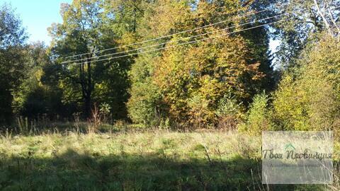 Участок 12 соток с лесными дерев. в деревне Старокурово Ступинский р-н - Фото 3