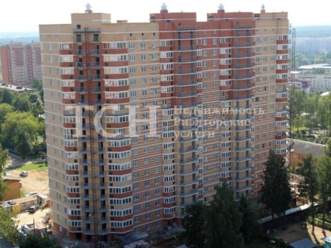 Торговая площадь, Ивантеевка, ул Школьная, 7 - Фото 4
