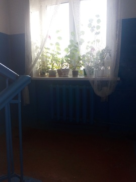 Срочно продам 1 комнатную в витебске, пр-т Черняховского - Фото 4