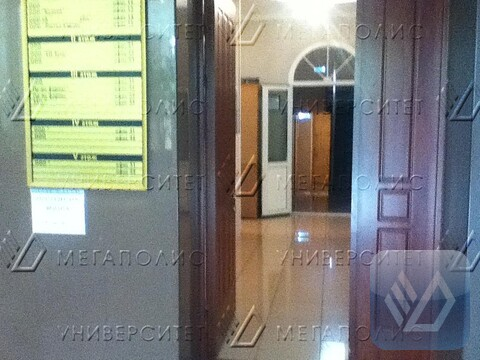 Сдам офис 128 кв.м, Раменки ул, д. 17 к1 - Фото 3