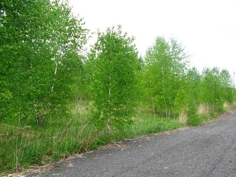 Участок 23,8 сот, с выходом в лес. - Фото 2