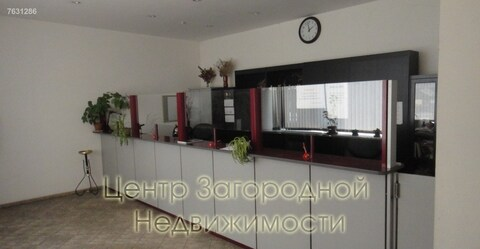Магазин, торговая площадь, Студенческая Кутузовская, 655 кв.м, класс . - Фото 2