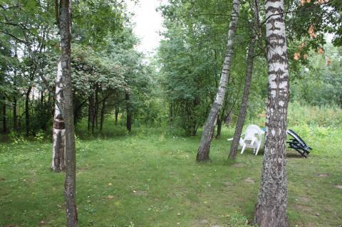 Лесной участок 30 соток в поселке премиум-класса Новой Москвы - Фото 1