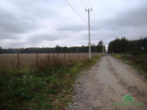 4,2 Га под сельхоз.назначение в д.Курбатово - 95 км Щёлковское шоссе - Фото 2