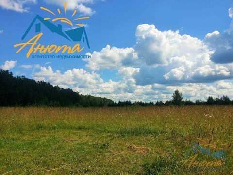 Инвестиционный проект в деревне Кабицыно на участке 3.5 га. - Фото 1