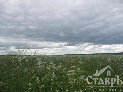 Ломоносовский район, п.Низино, 10 сот. ИЖС - Фото 4