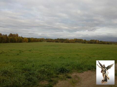 Продается участок в п. Синицыно - Фото 5