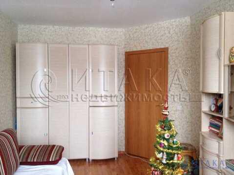 Продажа квартиры, Шушары, м. Звездная, Колпинское (Славянка) ш - Фото 5