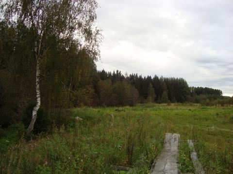 Ладожское озеро , д.Ириновка - Фото 1