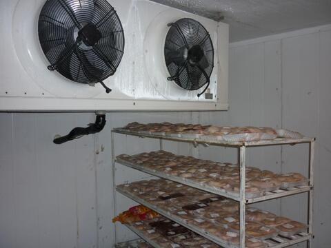 Продам цех убоя и переработки птицы фирмы mayer, участок- 38720 м2, - Фото 3