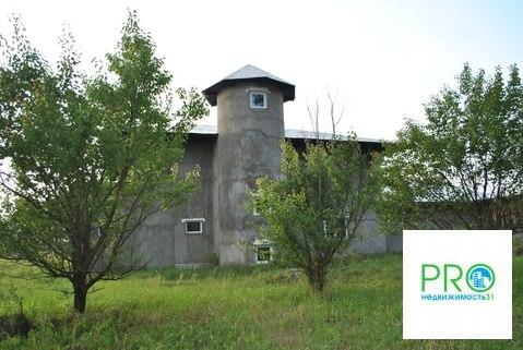 Дом в с. Новая Таволжанка - Фото 4