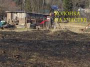 Волосовский район, д.Тешково 25 соток ЛПХ - Фото 2