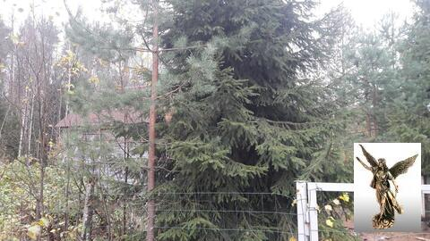 """Продается участок с домом в СНТ """"Новоперовское"""" - Фото 2"""