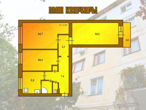 Просторная квартира в Евпатории - Фото 2