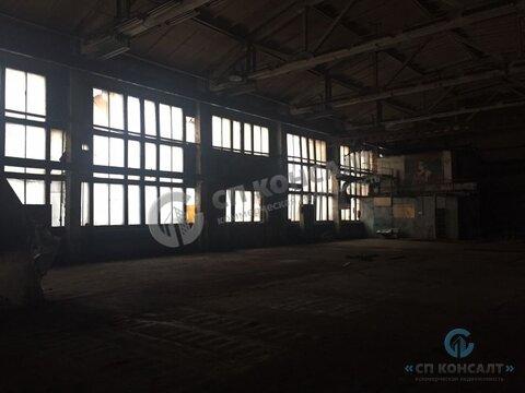 Сдам производственное помещение на Рокадке. - Фото 3