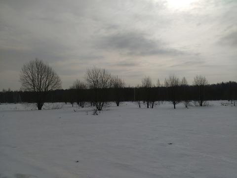 Продажа участка, Новинки, Дмитровский район, Новинки - Фото 4