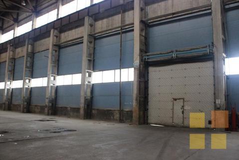 Готовое производство в Сосновом Бору на участке 2,7 га + ж/д ветка - Фото 4