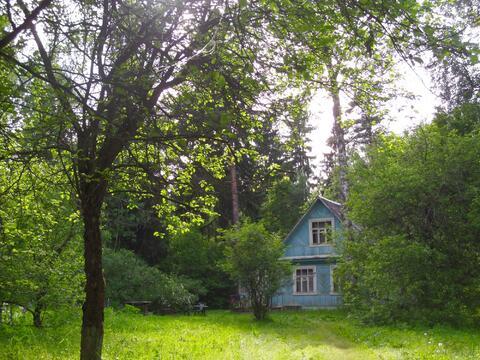 Лесной участок под ИЖС - Фото 1