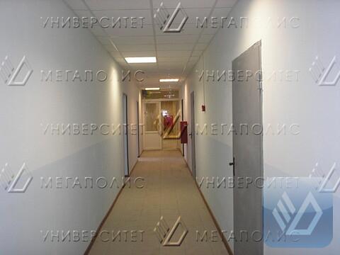 Сдам офис 98 кв.м, Щербаковская ул, д. 53 к17 - Фото 4
