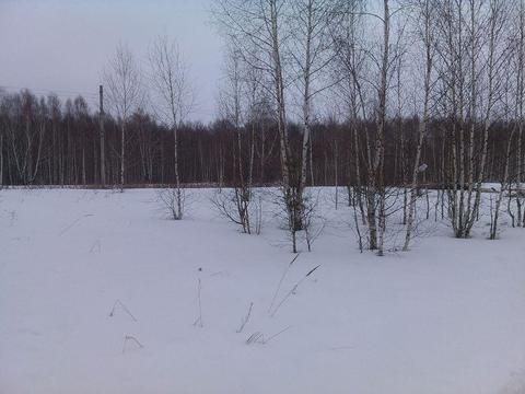 Продам земельный участок на п. Октябрьский ул. Тупицына - Фото 3