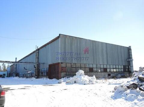 Производственное здание 4241 кв. м. Талдом - Фото 2