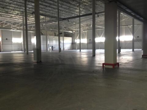Продажа склада класса А в 1 км от МКАД, Новая Москва - Фото 4