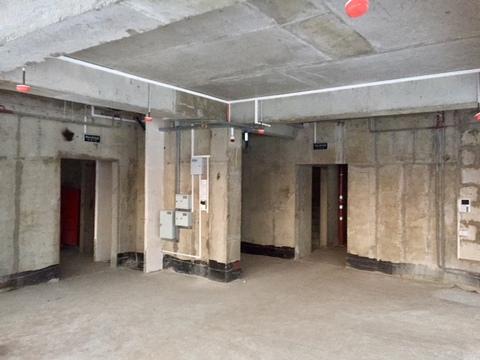 Аренда здания (осз) 275 кв.м. Варшавское шоссе, 120, корпус 3 - Фото 3