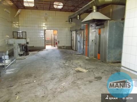Производственное помещение 500м2 Мытищи - Фото 1