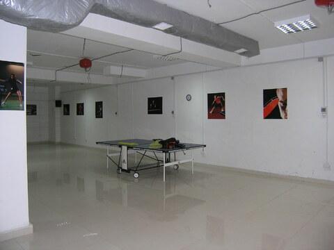 Продам офисное помещение, Севастополь, ул.Фадеева, Парк Победы - Фото 1