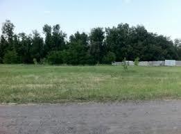 Участок в Нижнем Ольшанце - Фото 5