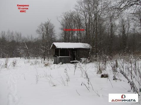 Продам участок 12 соток ИЖС д.Кикерино Волосовский район - Фото 3