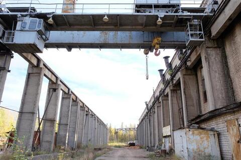 Производственно-складское здание 3 134 кв.м. - Фото 4