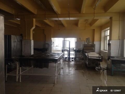 Пищевое производство - Фото 4