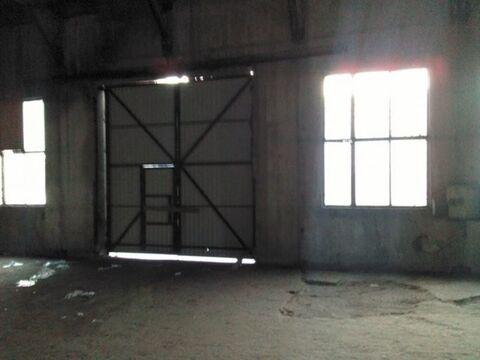 Сдам складское помещение 730 кв.м, м. Проспект Ветеранов - Фото 2