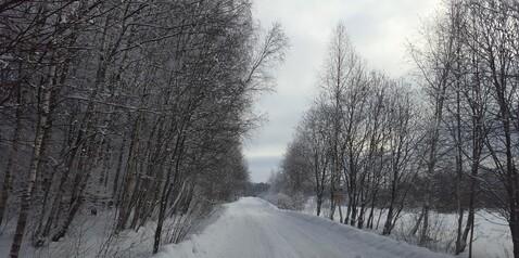 Продается земельный участок 6 соток Роговское пос, с. Каменка, СНТ Кв - Фото 2