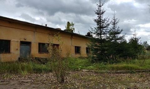 Продажа псн, Пригорское, Смоленский район - Фото 3