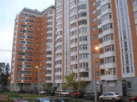 Квартира в дер. Голубое - Фото 2