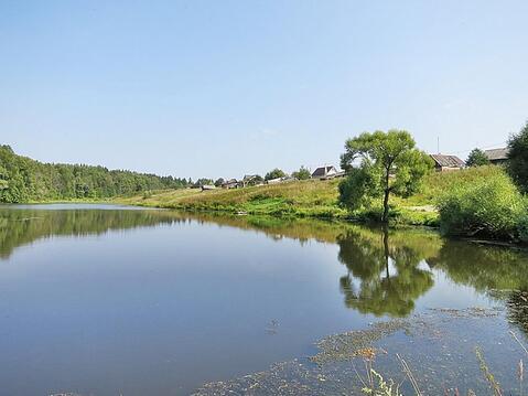 19,1 сотка в лесу газ и свет по границе, 69 км Калужское шоссе - Фото 3