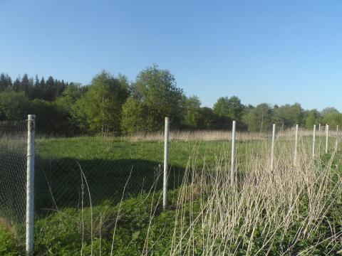 Земельный участок ИЖС 12 соток - Фото 4