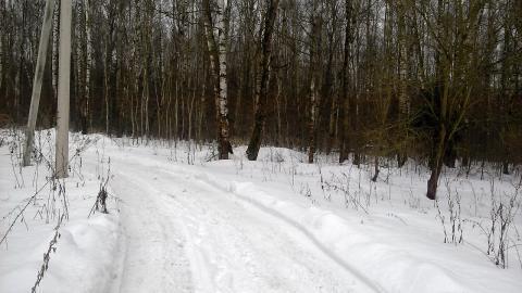 Каширское шоссе 48 км от МКАД в г.о.Домодедово в с.Вельяминово 8 соток - Фото 5