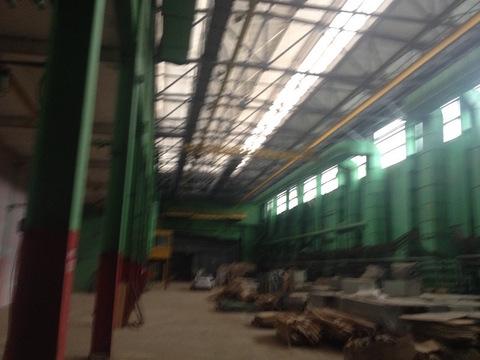 Сдается 1600 кв.м Производств.помещение М.Тушинская 19 м.пешком - Фото 3