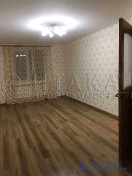 Продажа квартиры, Малое Верево, Гатчинский район, Ул. Кириллова - Фото 1