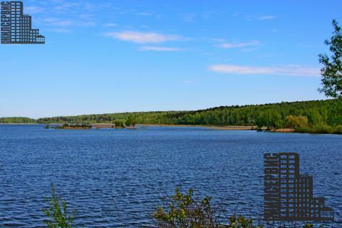 Земельный участок у озера в лесу, электричество, 55 км - Фото 3