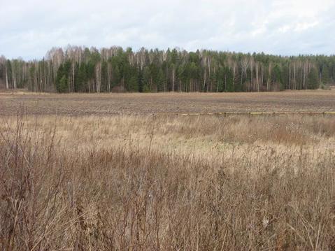 Земельный участок Дресвяново - Фото 1