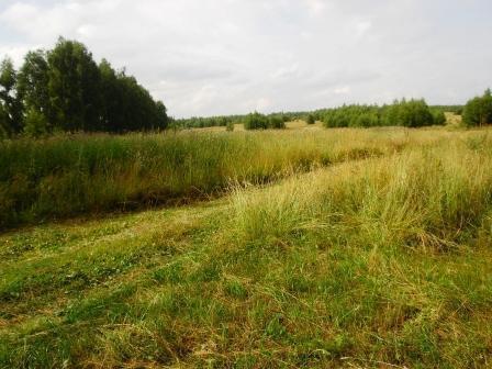 Усадьба 8 га. в 90 км от Нижнего Новгорода - Фото 2
