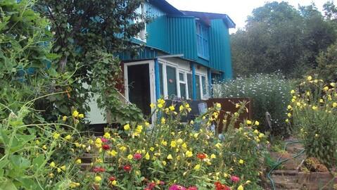 Продам сад рядом с Романовкой - Фото 5